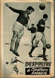 Imagem de  DESPORTOS DO CAVALEIRO ANDANTE Nº 110