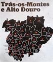 Imagem para categoria TRÁS-OS-MONTES E ALTO DOURO